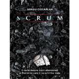Scrum - Sergiu Ciocarlan, editura Egumenita