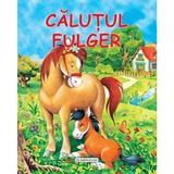Calutul Fulger, editura Flamingo