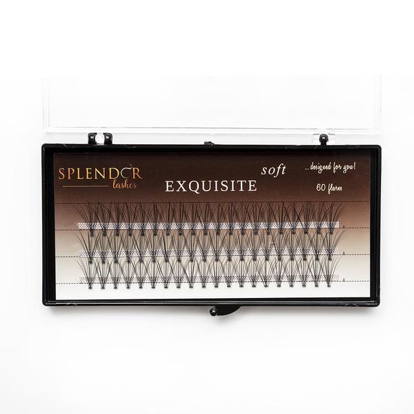 Gene false smocuri Exquisite Soft 10D Silk Lashes - 60 buc marimea M imagine produs