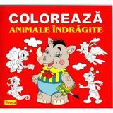 Coloreaza animale indragite, editura Teora