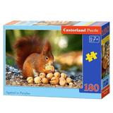 Puzzle 180. Squirrel in Paradise