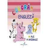 Pui de animale - Coloram si invatam limba engleza, editura All