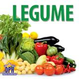 Legume - Pliant, editura Didactica Publishing House