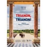 Trianon, trianon! - Vasile Puscas, Ionel N. Sava, editura Scoala Ardeleana