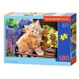 Puzzle 180 Castorland - Ginger Kitten