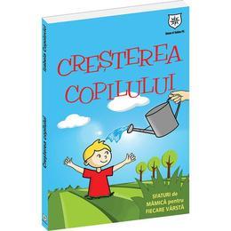 Imagine indisponibila pentru Cresterea copilului - Izabela Copolovici, editura Leader Human Resources