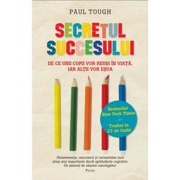Secretul succesului - Paul Tough, editura Litera