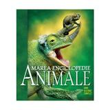 Marea enciclopedie: Animalele. Ghid ilustrat complet, editura Litera