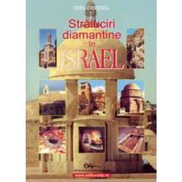 Straluciri diamantine in Israel - Doru Ciucescu, editura Didactica Si Pedagogica