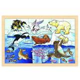 Puzzle Viata polara - Goki