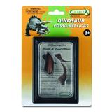 Dinte si Gheara de Velociraptor Box Set - Animal figurina