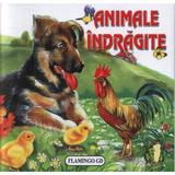 Animale indragite - Pliant, editura Flamingo