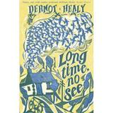 Long Time, No See - Dermot Healy, editura Faber & Faber