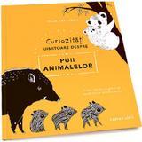 Curiozitati uimitoare despre puii animalelor - Maja Safstrom, editura Cartier