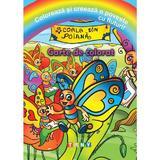 Coloreaza si creeaza o poveste cu fluturi! Carte de colorat, editura Ars Libri