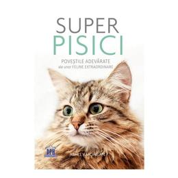 Super pisici - Ashley Morgan, editura Didactica Publishing House