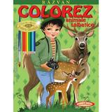 Razvan. Colorez animale salbatice - Petru Ghetoi, editura Casa Povestilor