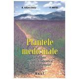 Plantele medicinale - R. Radulescu, F. Matei, editura Mast