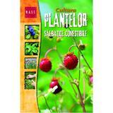 Cultura plantelor salbatice comestibile, editura Mast