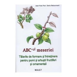 Abc-ul meseriei - Jean-Yves Prat, editura Mast