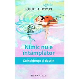 Nimic nu e intamplator - Robert H. Hopcke, editura Humanitas