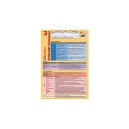 Plansa Limba engleza - English Grammar 3, editura Booklet
