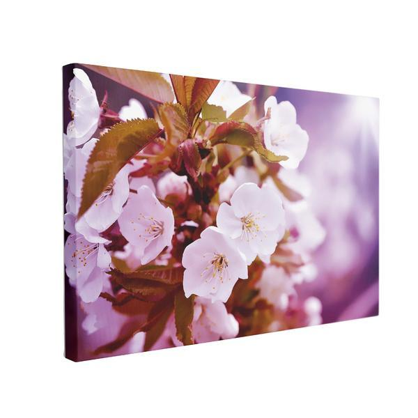 Tablou Canvas Cherry Blossoms, 40 x 60 cm, 100% Bumbac