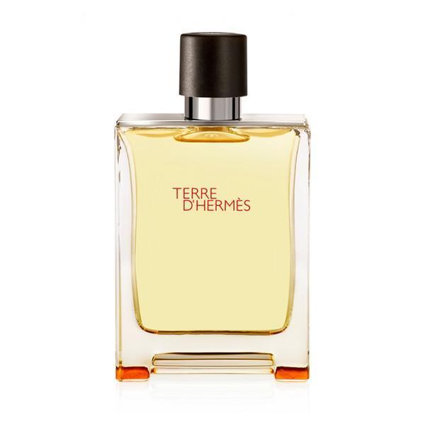 Apa de parfum pentru barbati Hermes terre d'hermes 100ml poza