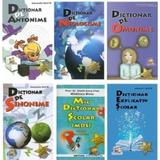 Pachet Dictionare, editura Lizuka Educativ