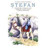 Stefan, povestea primului om care si-a dat viata pentru Hristos - Florence Morse Kingsley, editura Predania