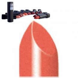 Ruj Stick Film Maquillage Rossetto Stick Nr 12