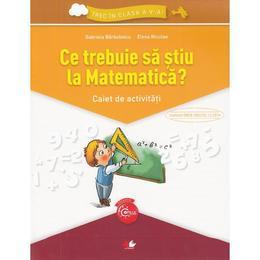 Ce trebuie sa stiu la matematica? Trec in clasa 5 - Caiet - Gabriela Barbulescu, Elena Niculae, editura Litera