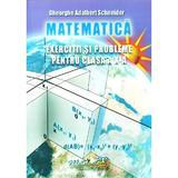 Matematica - Clasa 10 - Exercitii si probleme - Gheorghe Adalbert Schneider, editura Hyperion