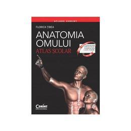 Anatomia omului - Atlas Scolar - Florica Tibea, editura Corint
