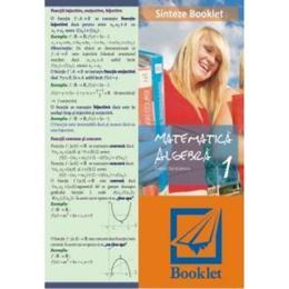 Sinteze booklet 1 - Algebra - Felicia Sandulescu, editura Booklet