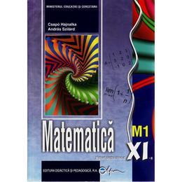 Matematica Cls 11 M1 - Csapo Hajnalka, Andras Szilard, editura Didactica Si Pedagogica