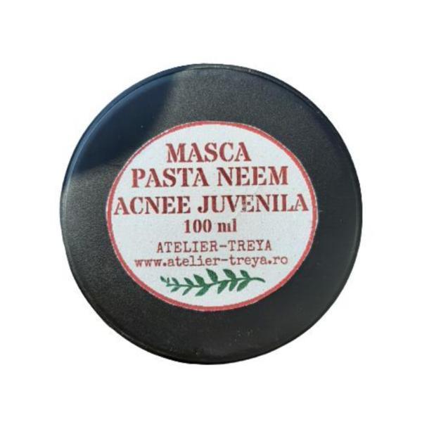 Pasta cu Neem pentru acneea juvenila Atelier TreYa, 100 ml