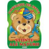Ursuletul Cel Istet Merge La Scoala Stiinte Ale Naturii Cls 3 - Elena Ibric, editura Erc Press