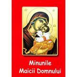 Minunile Maicii Domnului - Nicodim Mandita, editura Agapis