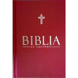 Biblia cu ilustratii Vol. 8, editura Litera