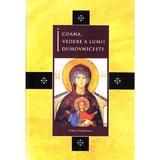 Icoana, vedere a lumii duhovnicesti, editura Renasterea