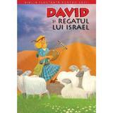 Biblia ilustrata pentru copii vol.6: David si regatul lui Israel, editura Litera
