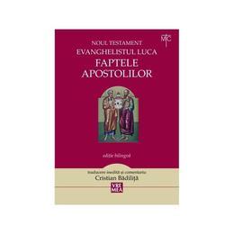 Faptele apostolilor - Evanghelistul Luca. Noul Testament - Cristian Badilita, editura Vremea