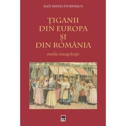 Tiganii Din Europa Si Din Romania - Alex Mihai Stoenescu, editura Rao