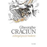 Aisbergul poeziei moderne - Gheorghe Craciun, editura Polirom