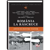 Romania La Rascruce - Iulian Stanescu, Catalin Zamfir, editura Universul Juridic