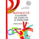 Matematica - Clasa 5 - Culegere de exercitii si probleme - Ioan Pelteacu, Elefterie Petrescu, editura Aramis