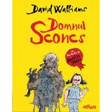 Domnul Sconcs - David Walliams, editura Grupul Editorial Art