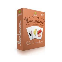 montessori-clasificare-cele-5-simturi-editura-gama-1.jpg
