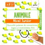 Iq Focus - Animale. Nivel Junior 3-4 Ani